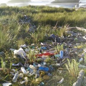 C´s denuncia la falta de limpieza y mantenimiento del playón de Bayas