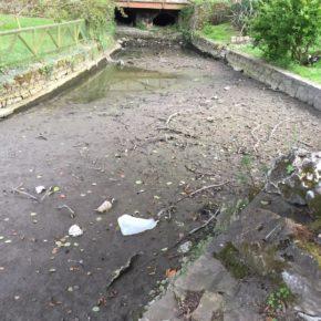 Ciudadanos denuncia la falta de limpieza del canal del Parque de Isabel La Católica
