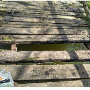 Ciudadanos denuncia el mal estado de los puentes de madera del parque de La Fresneda y la presencia de jabalíes en la zona urbana