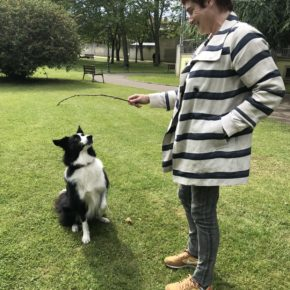 Carmen Pérez Soberón propone más espacios y formación en tenencia de animales en las Aulas Populares