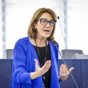Ciudadanos defiende que todas las zonas mineras españolas deben poder acceder a las ayudas europeas para la transición energética