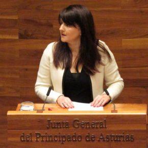 """La portavoz de Ciudadanos en la Junta General del Principado apela a la """"moderación y racionalidad"""" para frenar al populismo y nacionalismo"""