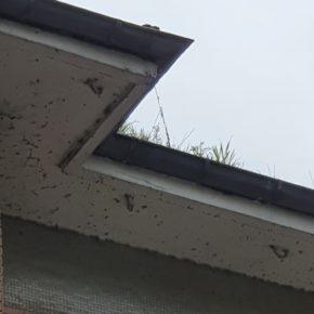 Ciudadanos San Martín reclama mejoras en las viviendas públicas de El Pontón